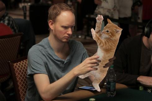 Тюнер покер кот